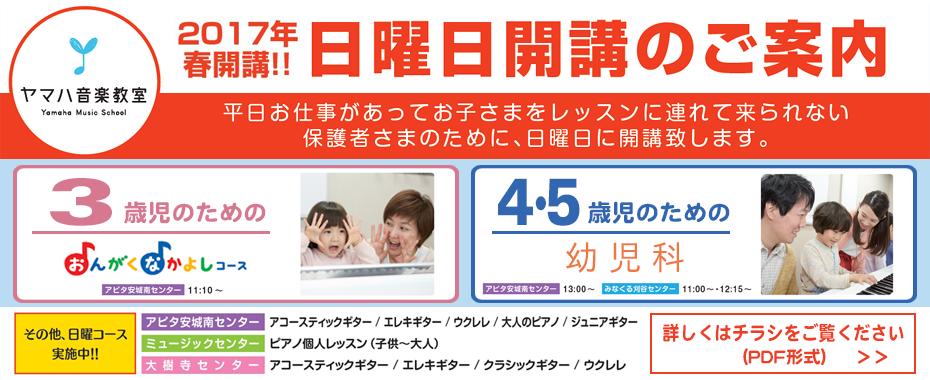 bn930_nichiyoukaikou2017